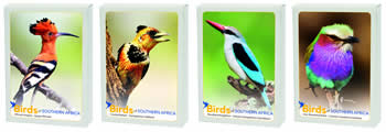 South African Birds Playing Cards